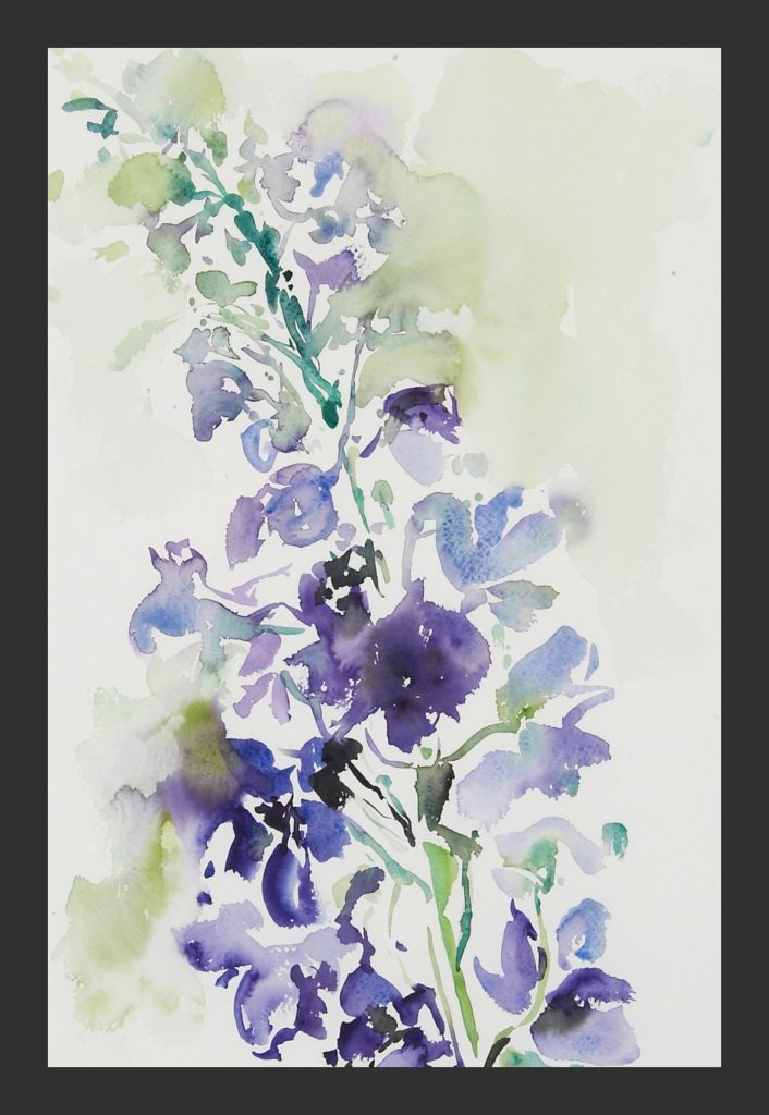 Rittersporn , Aquarell,30x40 cm