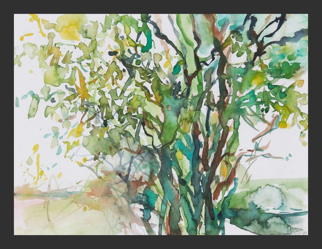 Weide, Aquarell,  30x40 cm