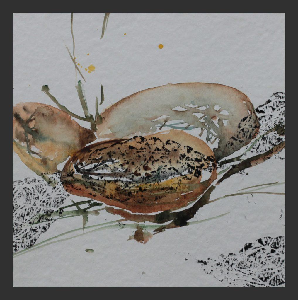 Palmfrucht, 2013, Aquarell mit Linoldruck, 25x25 cm
