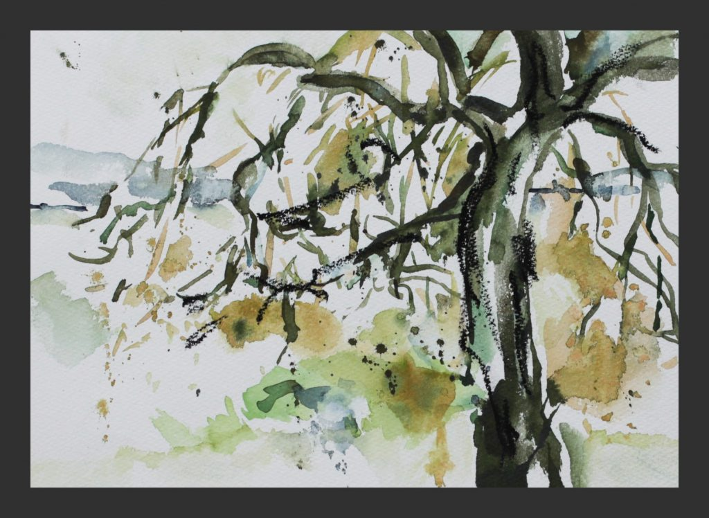 Weide, 2011, Aquarell, 21x28 cm