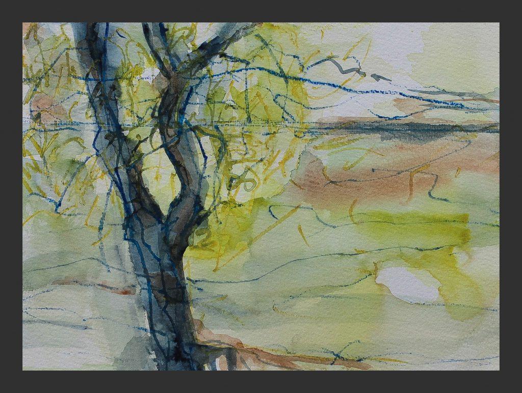 Baum am Ufer, 2015, Aquarell, 21x28 cm